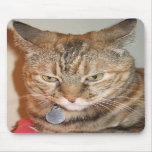 cinnamon the cat mouse pads