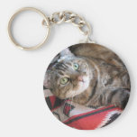 cinnamon the cat on red key chains