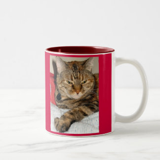 Cinnamon the Cat Two-Tone Coffee Mug