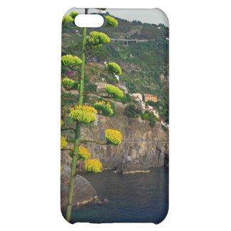 Cinque Terre - Century Plant iPhone 5C Covers