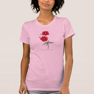 Cinquefoil rojo de la flor salvaje de los 1800s de camiseta