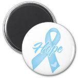 Cinta de la esperanza - cáncer de próstata imán de nevera