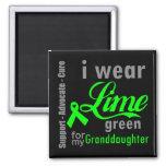 Cinta de la verde lima del linfoma para mi nieta iman de nevera