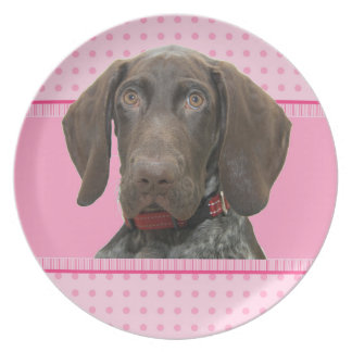 cir    grizzly   girlspink baby 4.jpg dinner plate