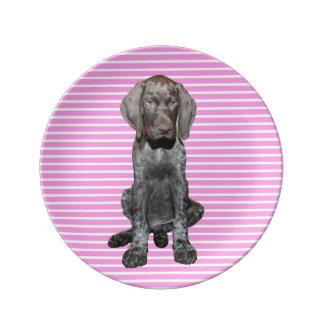 cir  grizzly pink stripes.jpg porcelain plates