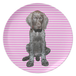 cir  grizzly pink stripes.jpg party plate