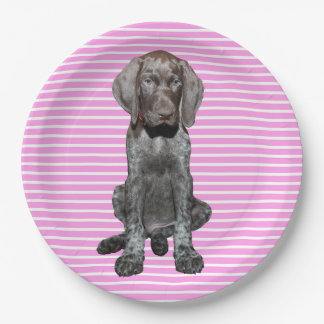 cir  grizzly pink stripes.jpg 9 inch paper plate
