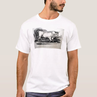 Circa 1880 Engraving Cattle Breed Chillingham Bull T-Shirt