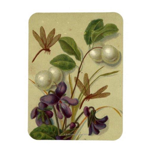 Circa 1881: Snowberries y violetas Iman