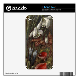 Circa 1890: Snowdrops Decal For iPhone 4