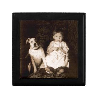 circa 1910 pitbull and baby jewelry box
