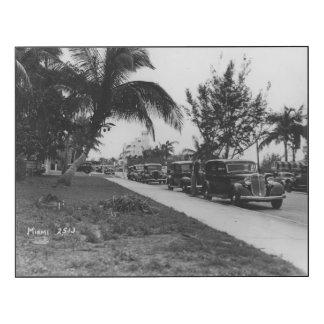 Circa 1930:  Coches parqueados por una palmera