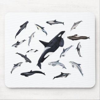 Circle of dolphins mouse pad