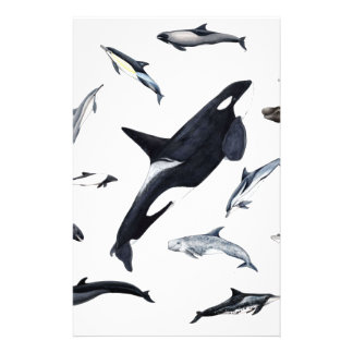 Circle of dolphins stationery