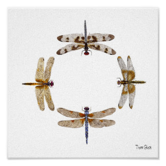 CIRCLE OF DRAGONFLIES POSTER