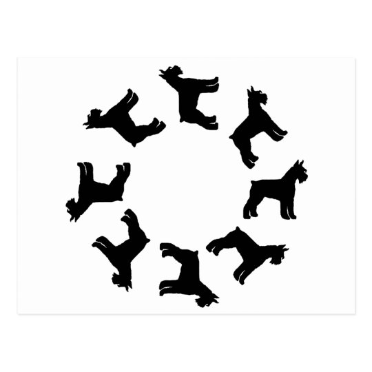 Circle of Giant Schnauzers (blk) Postcard