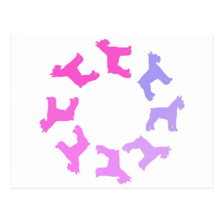 Circle of Giant Schnauzers (pinks to purples) Postcard