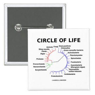 Circle Of Life Circular Phylogenetic Tree Buttons