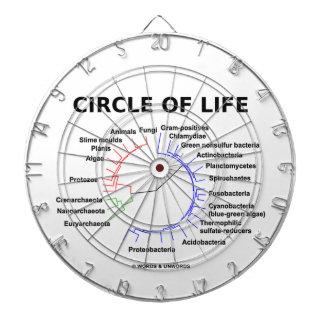 Circle Of Life (Circular Phylogenetic Tree) Dartboards