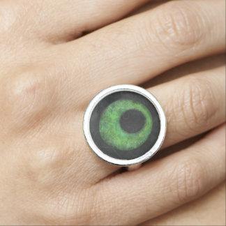 circle of life rings