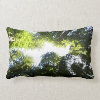 Circle of Redwood Trees at Redwood National Park Lumbar Pillow