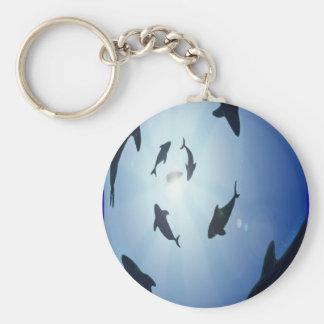 Circle-of-sharks Keychain