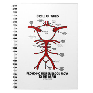 Circle Of Willis Providing Proper Blood Flow Brain Spiral Notebooks