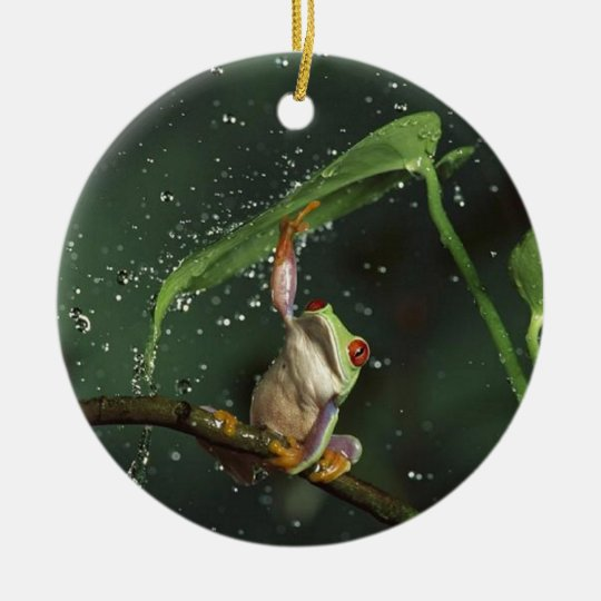 Circle Ornament,  Red Eyed Frog Ceramic Ornament
