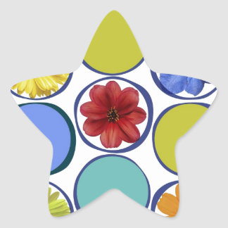 Circle pattern with flowers .JPEG Star Sticker