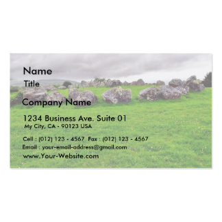 Circles At Carrowmore Double-Sided Standard Business Cards (Pack Of 100)