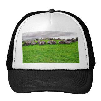 Circles At Carrowmore Trucker Hat