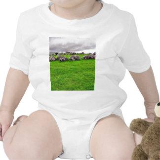 Circles At Carrowmore T-shirt