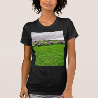 Circles At Carrowmore T Shirt