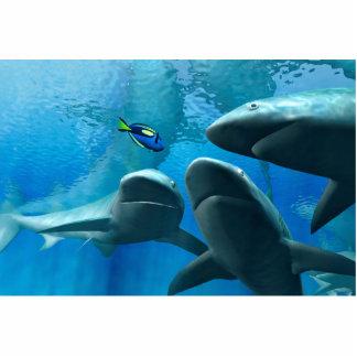 Circling Sharks Cutout