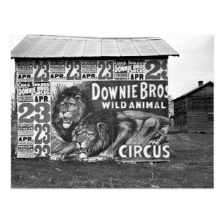 Circo en Tennessee, los años 30 Tarjeta Postal