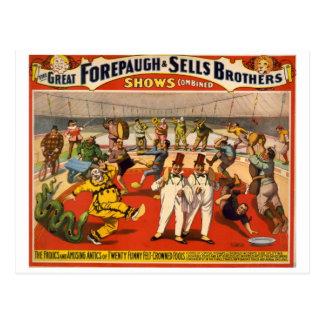 Circo Forepaugh del vintage y ventas Tarjetas Postales