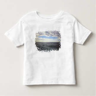 Circular Clouds over the Atlantic Ocean Toddler T-shirt