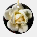 Circular Ornement del rosa blanco Ornamento Para Reyes Magos