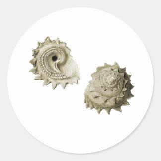 Circular Saw Shell Classic Round Sticker