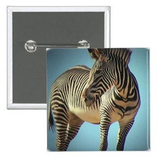 Circular Zebra Square Pin