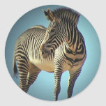 Circular Zebra Sticker