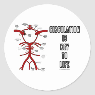 Circulation Is Key To Life (Circle Of Willis) Sticker