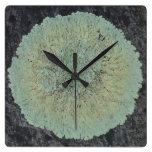 Círculo cubierto de musgo del liquen reloj de pared