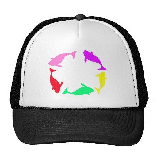 Círculo de la ballena de la orca en cinco colores gorra