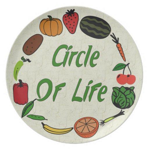 Círculo de la vida plato de comida