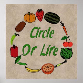 Círculo de la vida póster