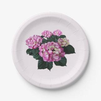 Círculo del Hydrangea rosado Platos De Papel