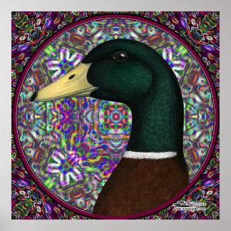 Círculo del mosaico de Drake del pato silvestre Póster