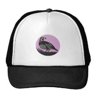 Círculo del pájaro de las codornices del valle de gorros