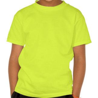 Círculo doble de la cosecha de Triskelion Tee Shirts